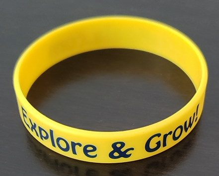 Explore & Grow Wristband