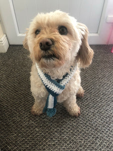 Blue and white dog scarf