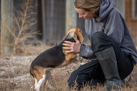 Caring for dogs at Kindness Ranch