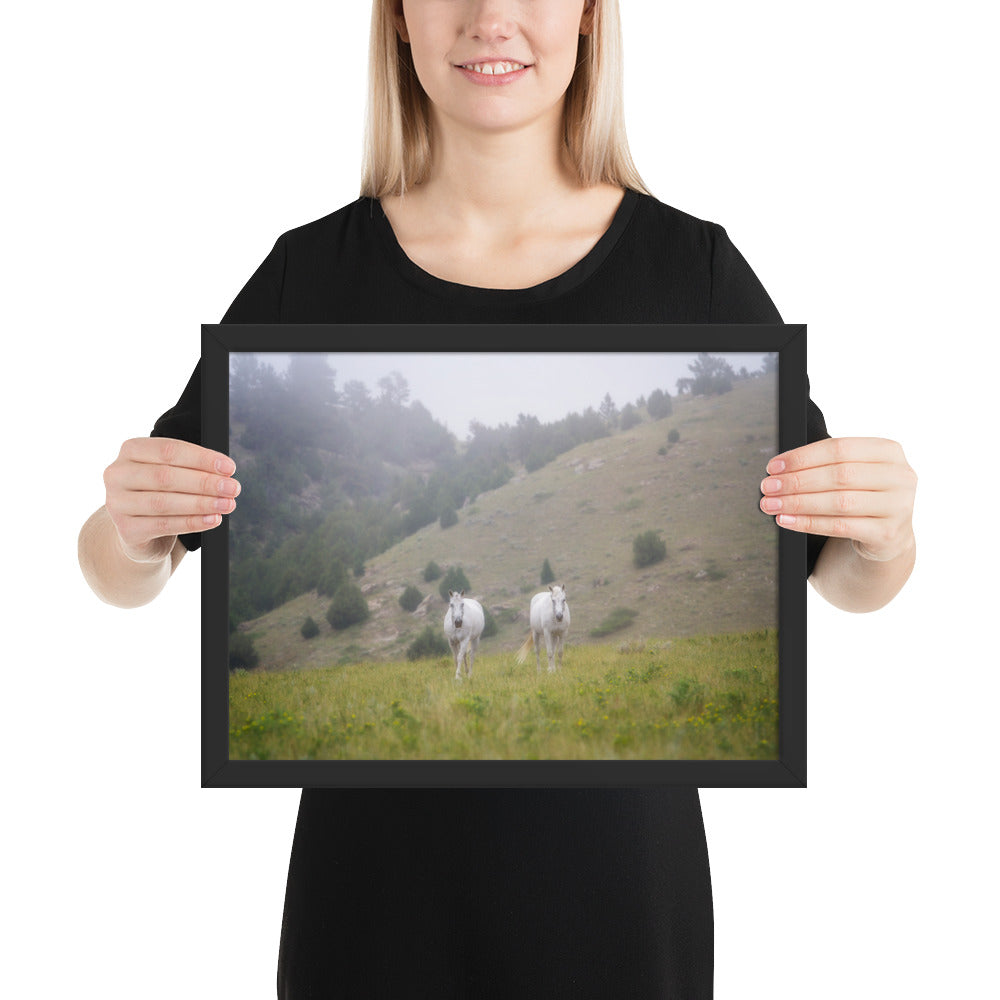 """The Twins"" at Kindness Ranch framed poster print"