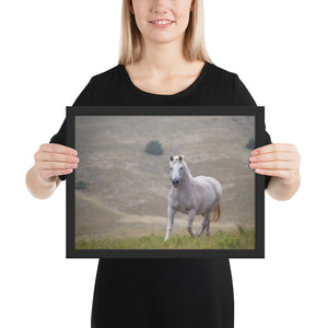 """An Old Friend"" at Kindness Ranch framed poster print"