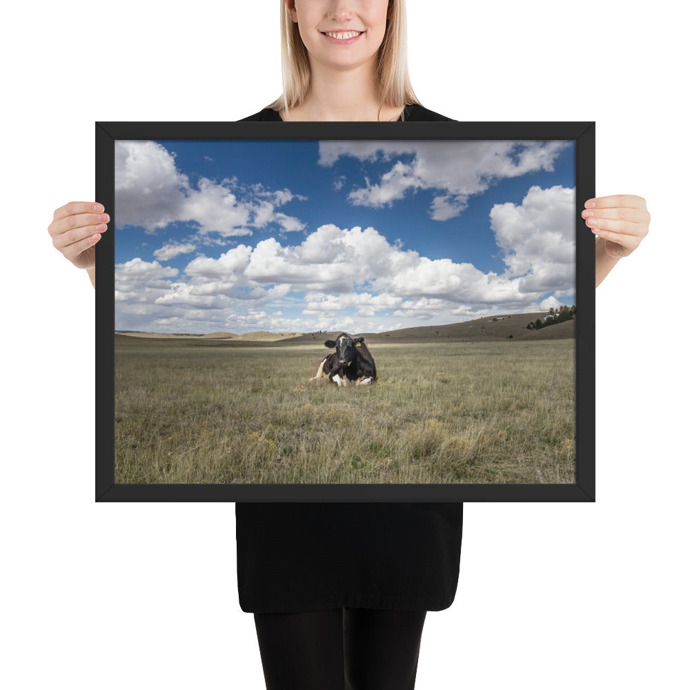 """A Fine Place to Rest"" at Kindness Ranch framed poster print"
