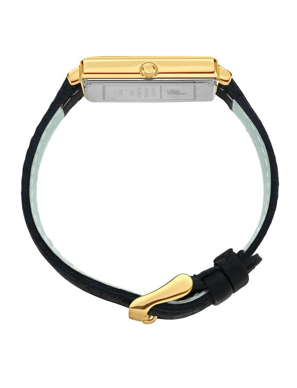 Norse Black Leather 40mm Gold Satin-White