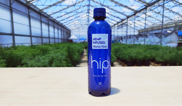 Hemp Infused Alkaline Water