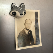 Load image into Gallery viewer, Raccoon Porcelain Magnet
