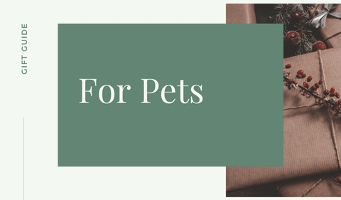 hawaii gifts for pets