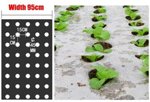 Load image into Gallery viewer, Ground Plant Plastic Film with pre-made holes - Stops weeds keeps in moisture