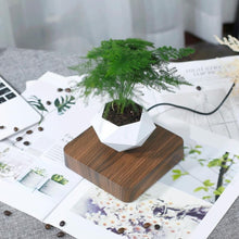 Load image into Gallery viewer, Levitating Air Planter