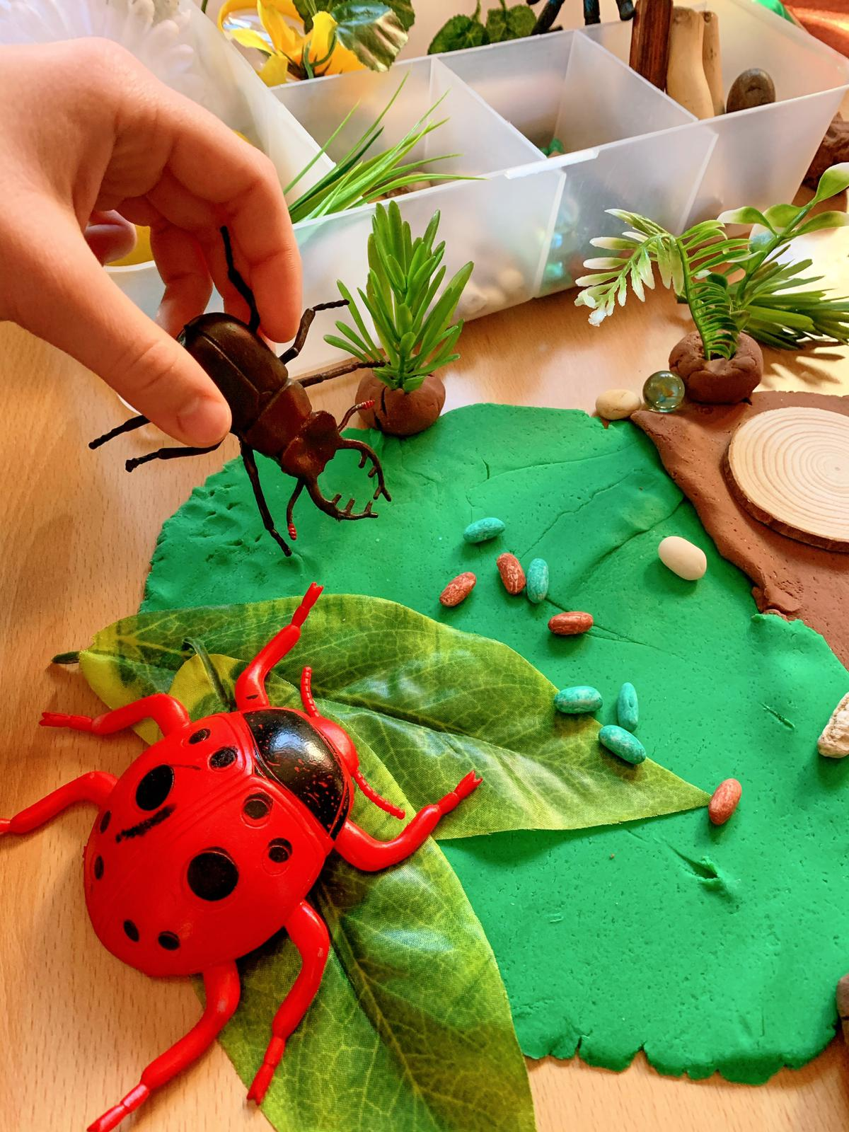 Insects Kit