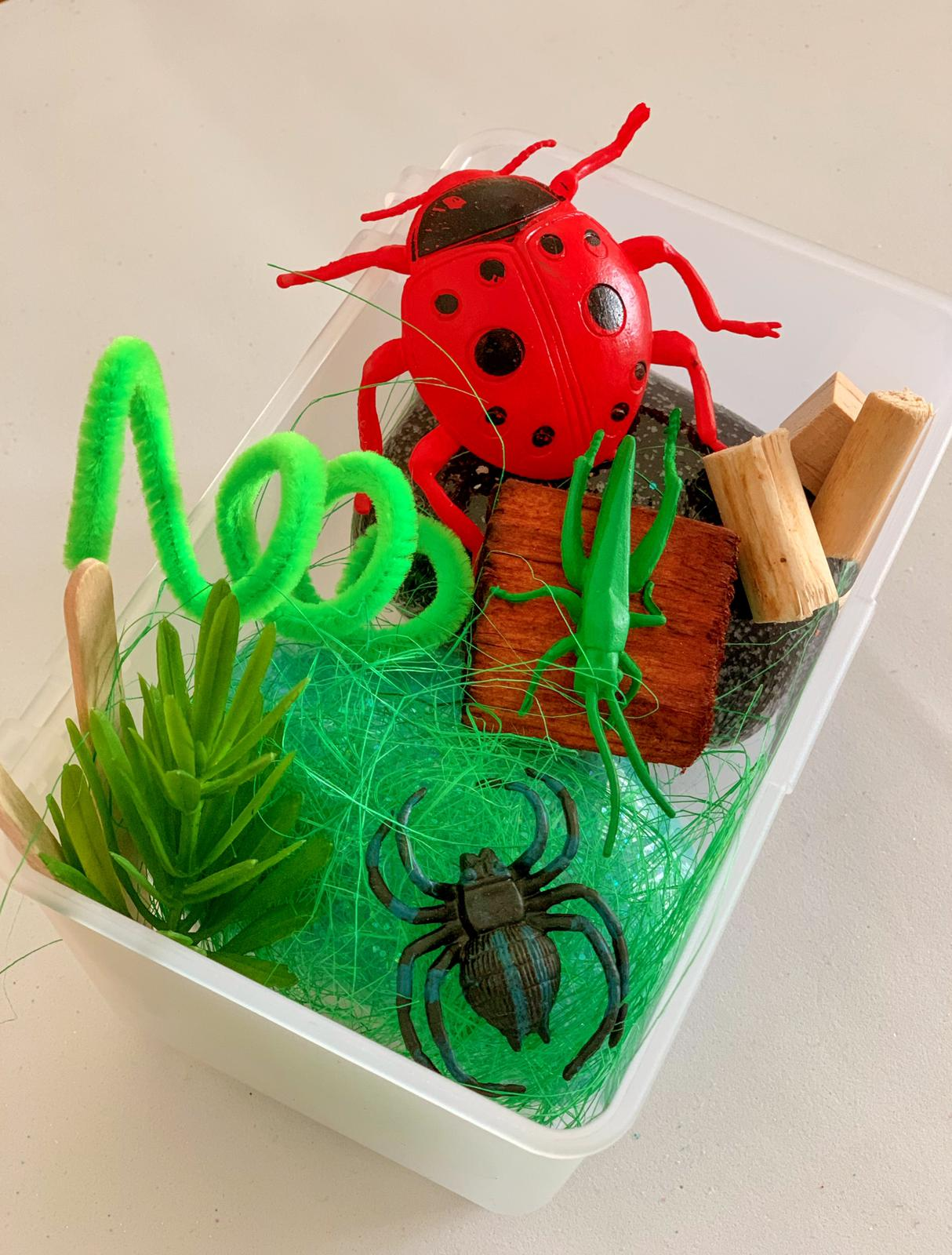 Insects Mini Kit