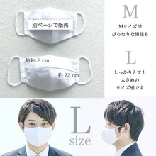Load image into Gallery viewer, Japanese Antibacterial/antiviral 3D Guard Mask(L)