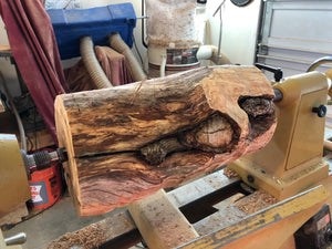 Starting a new piece (WT #103) from Spalted Crabapple