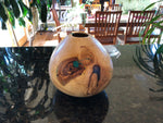 WT #32.  Hollow Form Vessel from Colorado Blue Spruce with Malachite inlay.