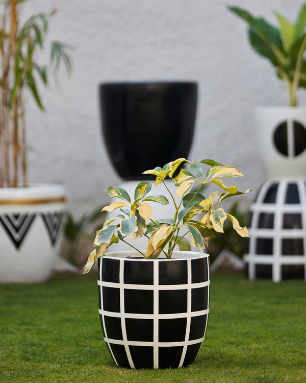 MOSCOW - NOIR BLACK PLANTER