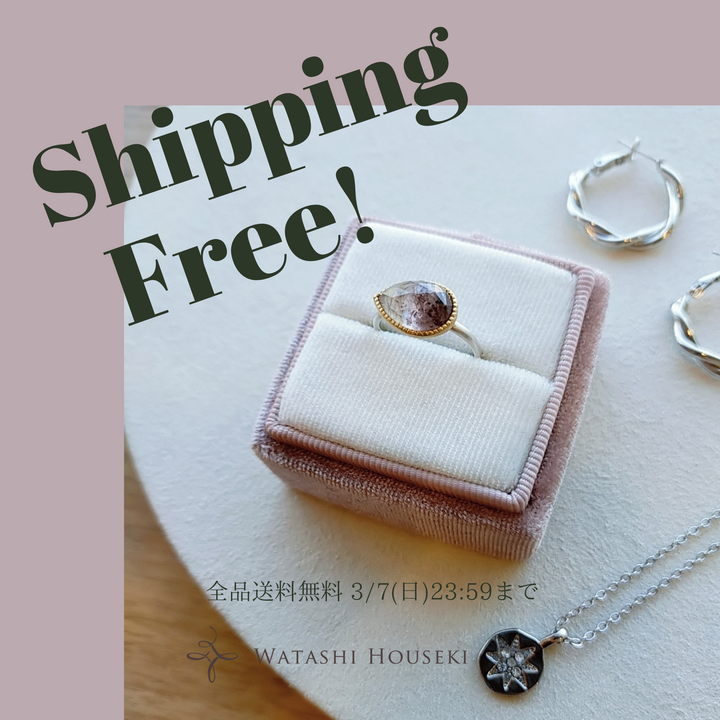 Free Shipping Campaign !