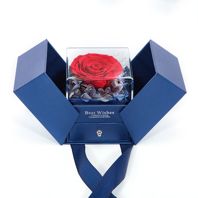 Preserved Fresh Roses Jewelry Box Valentine's Day Gifts Handmade Everlasting Flower for Ladies and Girls Express Love