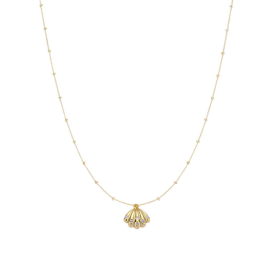 Bezel Clam Shell Necklace