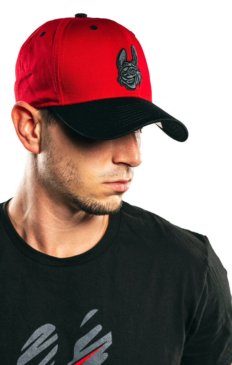 Misfits Gaming Pre-curved Snapback Cap, Red