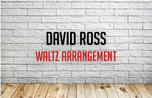 DAVID ROSS WALTZ - Modern Piping