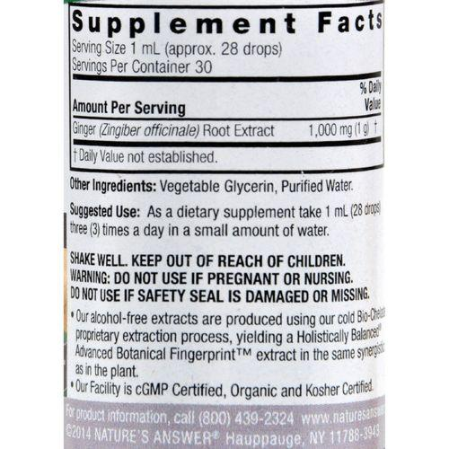 Nature's Answer - Ginger Root Alcohol Free - 1 fl oz