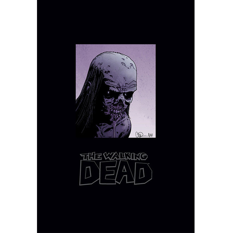 THE WALKING DEAD Omnibus 5 Hardcover | Issues #97-120