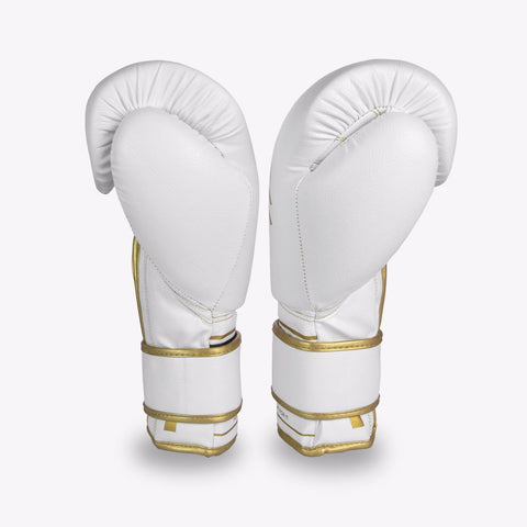 """""""professional boxing gloves"""""""