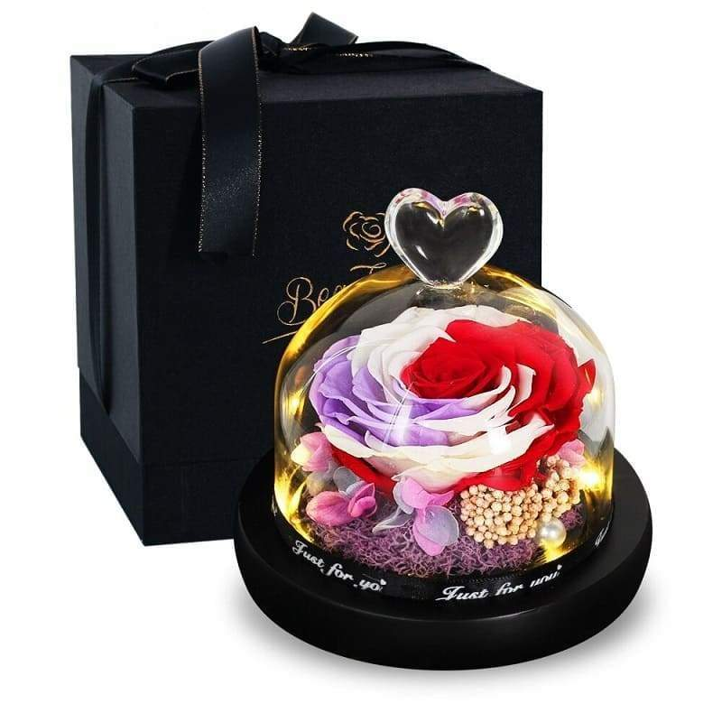 Eternal Rose Under Bell Luminous - Couple-Gift-Store