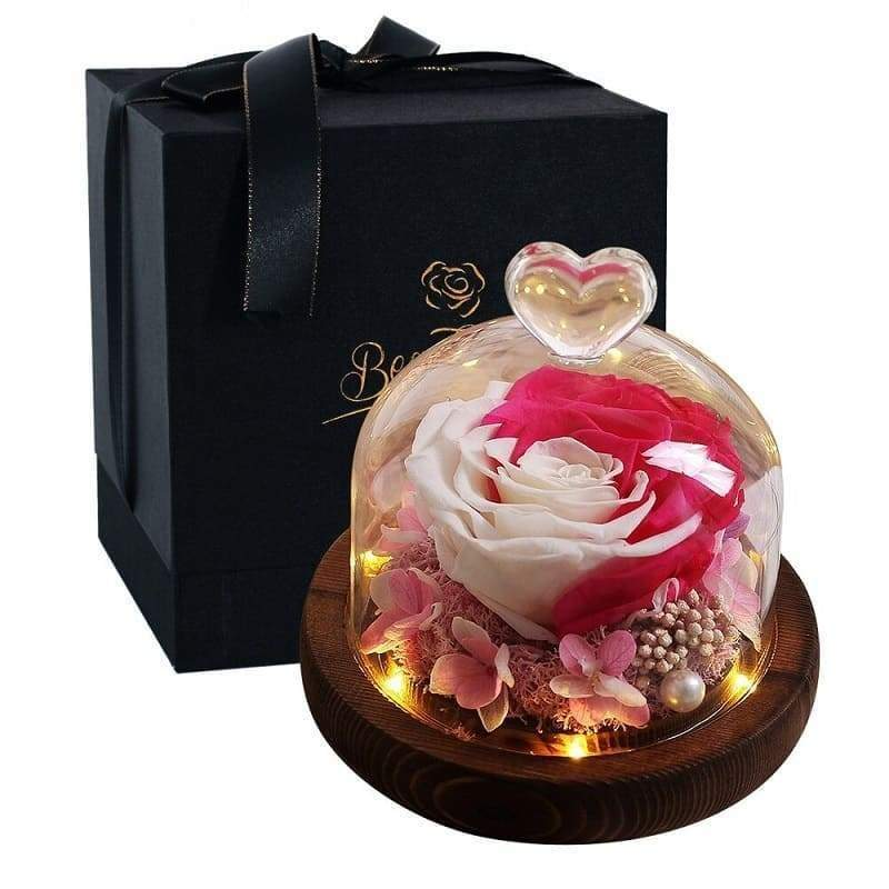 Eternal Rose Under Bell Pink and White - Couple-Gift-Store