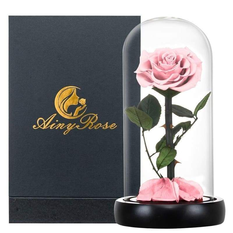 Eternal Rose Under Bell Pink XL (With box) - Couple-Gift-Store