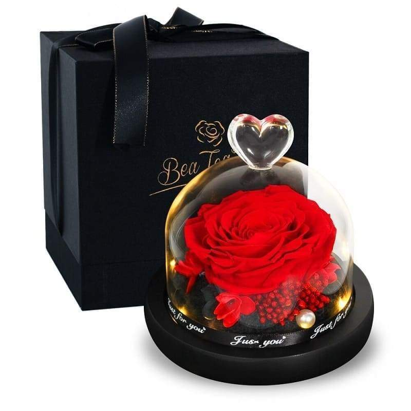 Eternal Rose Under Bell Red - Couple-Gift-Store