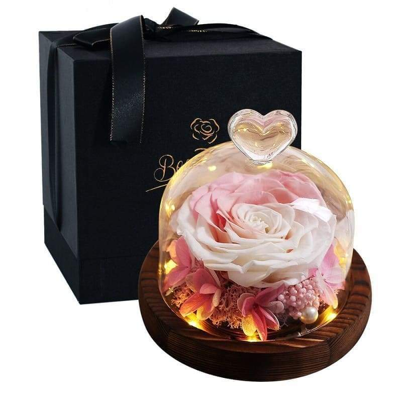 Eternal Rose Under Bell White and Pink - Couple-Gift-Store