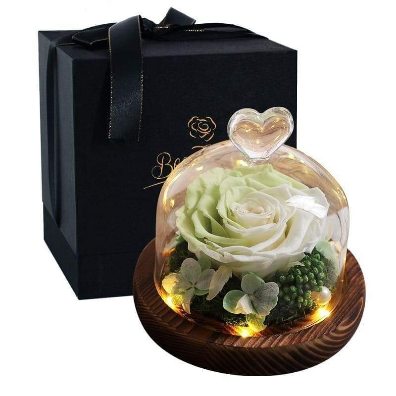Eternel Rose Under Bell Bicolor - Couple-Gift-Store