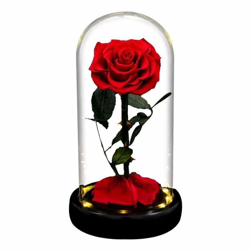 Red Led XL Eternal Rose Under Glass Bell
