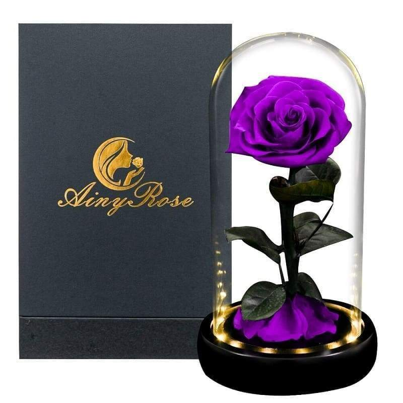 Violet Led XL Eternal Rose Under Bell