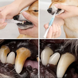 Dog Teeth Plaque Removing Pens