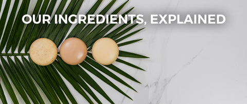 Ingredients banner palm leaf and bar soaps