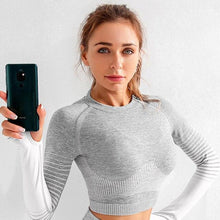 Load image into Gallery viewer, Gray Seamless Striped Sports Suits / Shirts +Leggings Leggings, Sports Set Primo Leggings gray shirt S