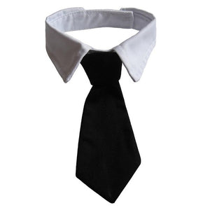 Pets Dog Cat Formal Necktie Black Tuxedo Bow Tie and Collar