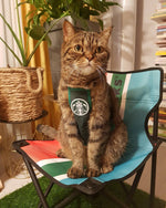 Load image into Gallery viewer, Pet Clothing  Starcats Coffee Maker Costumes Work Apron