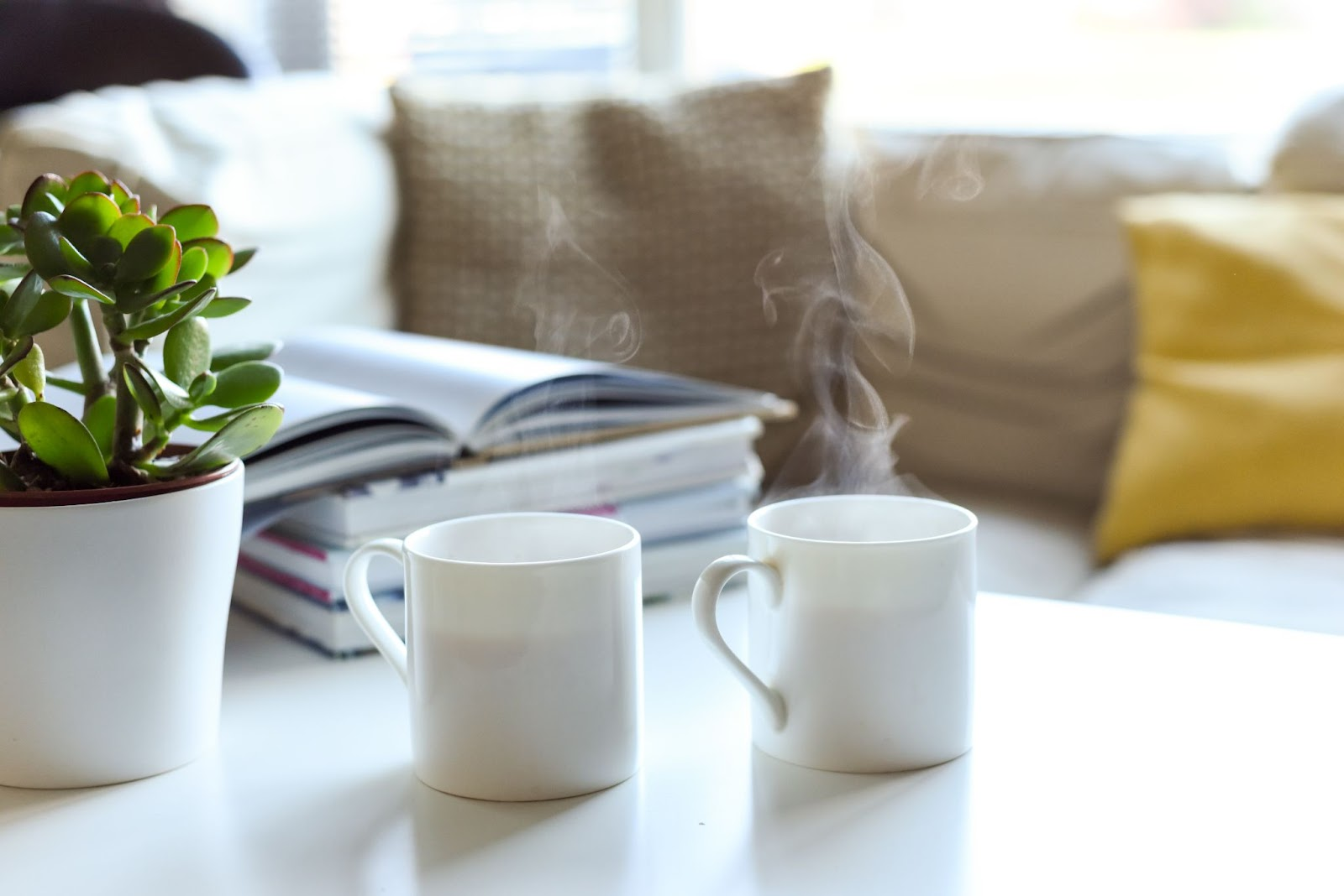 Coffee Table Books Best Closing Gifts for Real Estate Agents