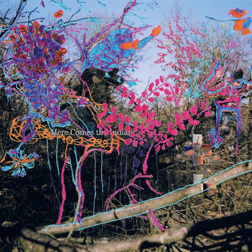 ANIMAL COLLECTIVE - Here Comes The Indian (LP)