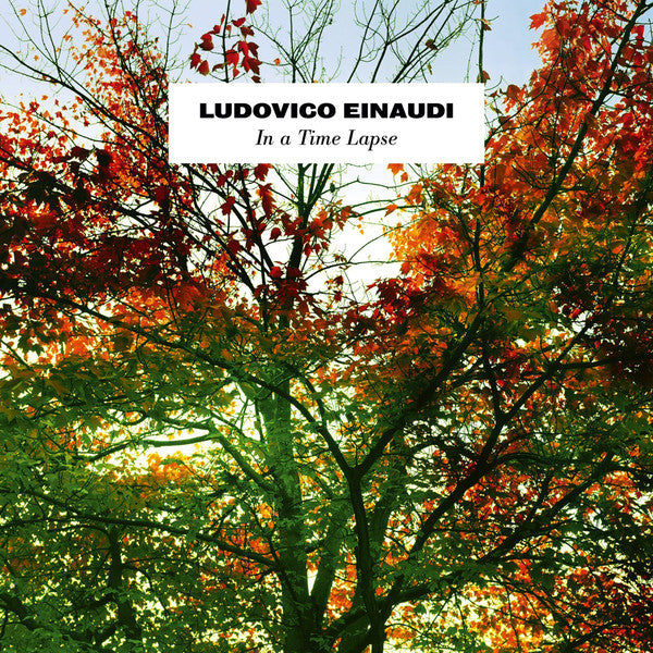 Ludovico Einaudi ‎– In A Time Lapse (2LP Gat)