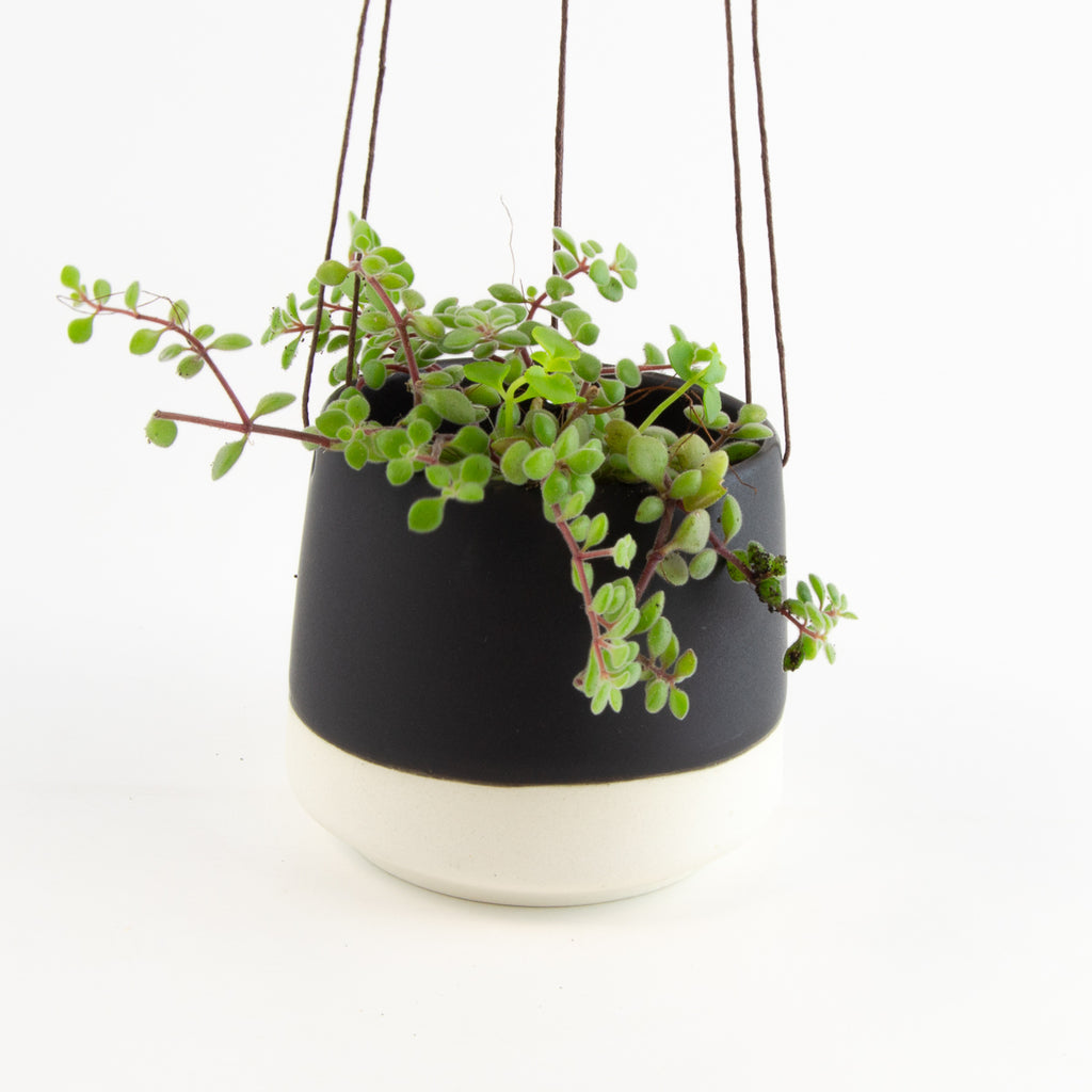 Small Ceramic Hanging Pot