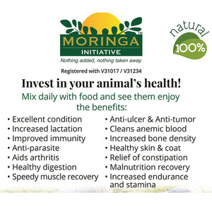 Moringa Initiative - Pet Food Supplement 100g