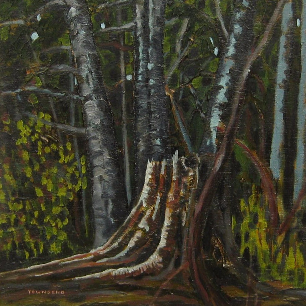 "Townsend, Bill (Canadian) - ""Forest Interior"", Oil on board"