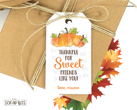 Thankful for Sweet Friends Like You . Thanksgiving Gift Tags