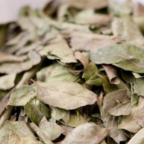 CURRY LEAF 100gm