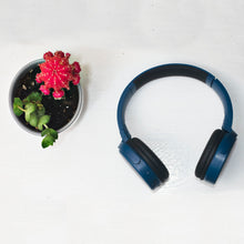 Load image into Gallery viewer, Magnavox MBH542-BL Bluetooth Wireless Foldable Stereo Headphones in Blue