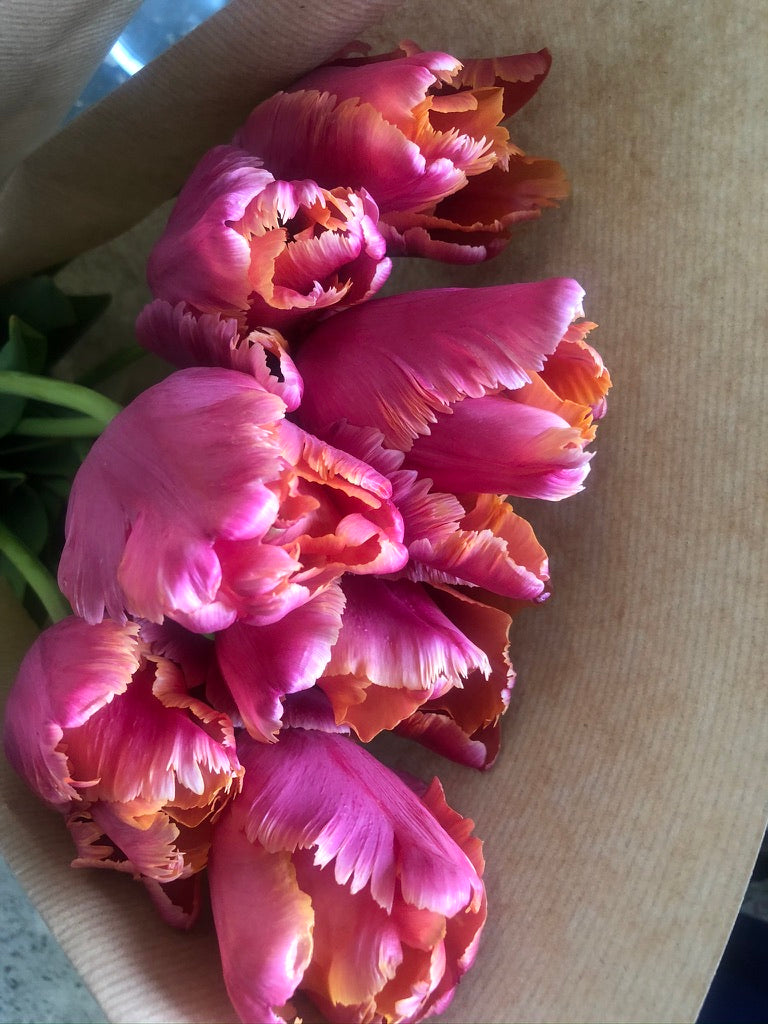 Tulips for Mother's Day