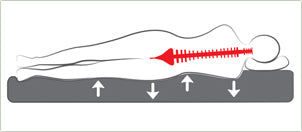 spinal alignment during sleep